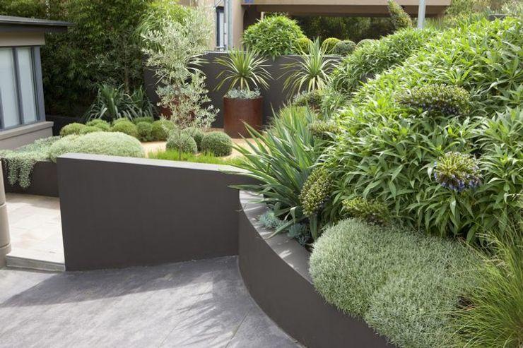 Студия 'ART Story' 花園植物與花