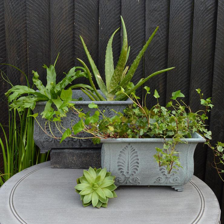Metal Garden Troughs - MiaFleur homify Garden Plant pots & vases