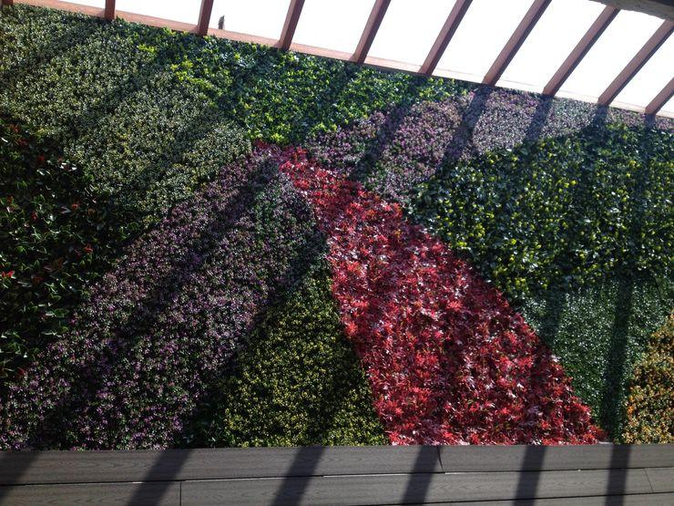 Grupo Boes Tropical style gardens
