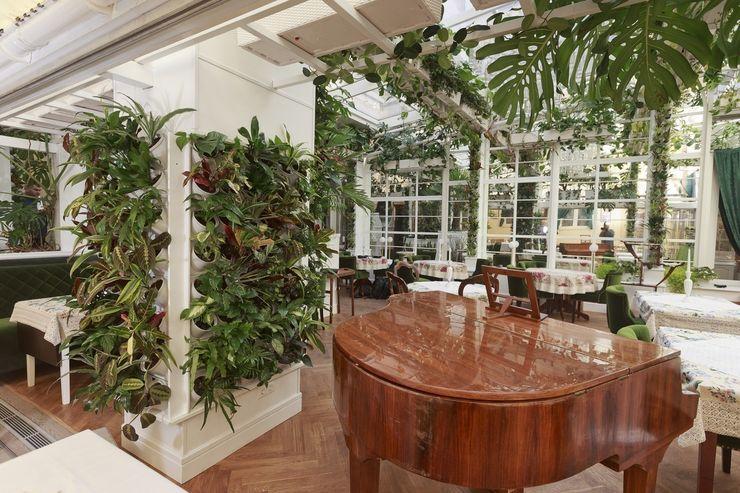 Zielona ściana – prosty montaż, fantastyczny efekt! Pixel Garden Nowoczesny ogród