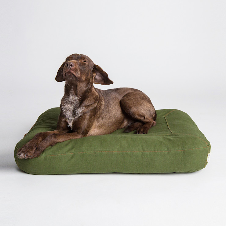 Interior Dog Beds Cloud 7 Finest Interiors for Dogs & Dog Lovers Living roomAccessories & decoration