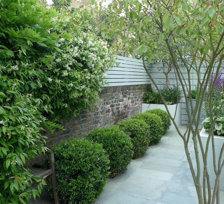 Small urban garden Ruth Willmott 庭院