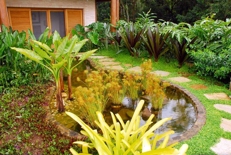 Gil Fialho Paisagismo Tropical style gardens