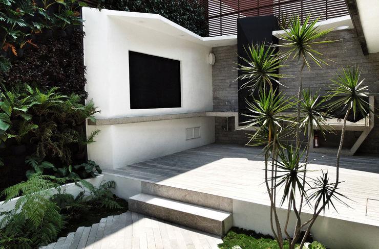 DF ARQUITECTOS Jardines de estilo moderno