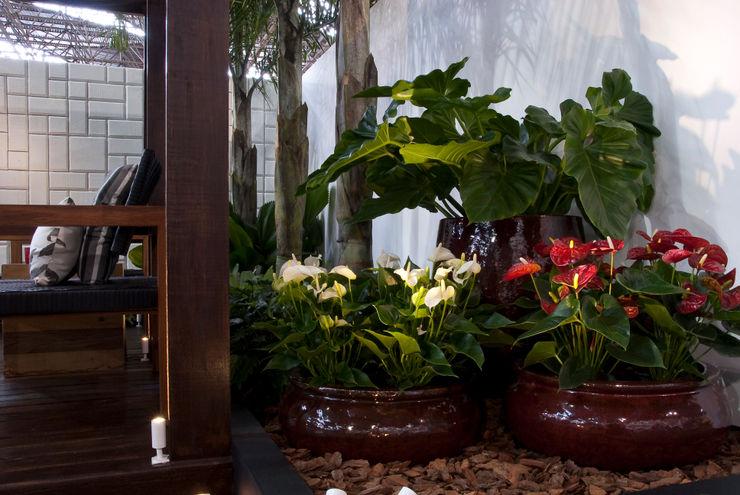 FiaFlora Expogarden   2009 Folha Paisagismo Jardins modernos