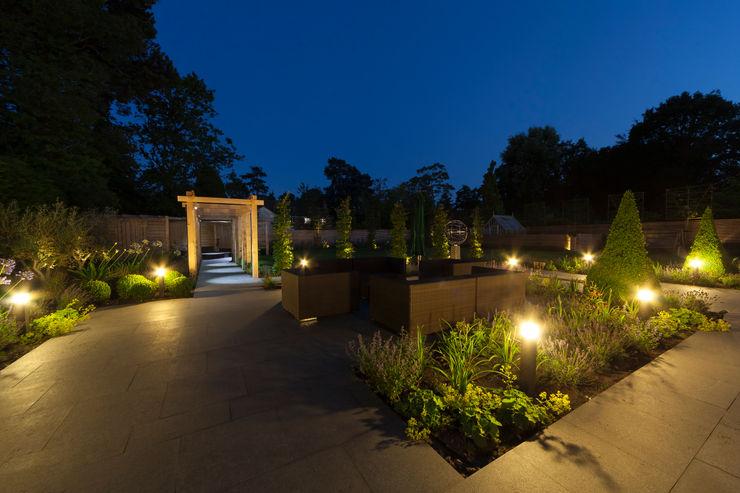 A contemporary Surrey garden Forest Eyes Photography Modern garden