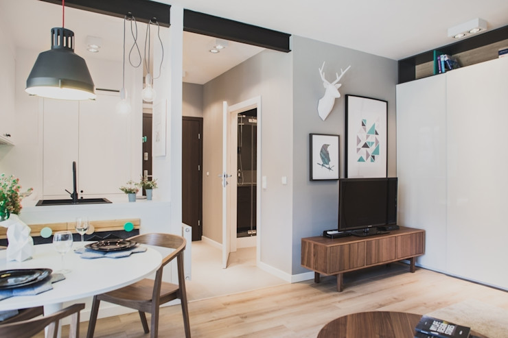 Raca Architekci 现代客厅設計點子、靈感 & 圖片