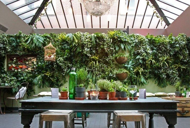 Artificial Living Green wall, Vertical Garden Evergreen Trees & Shrubs Interior landscaping