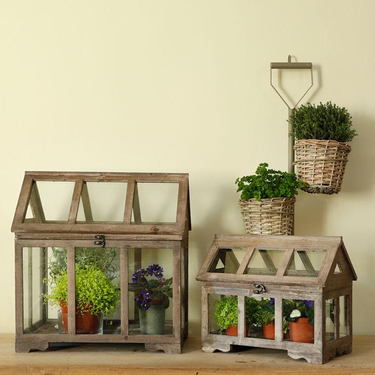 Large Glasshouse Terrarium ELLA JAMES Garden Accessories & decoration