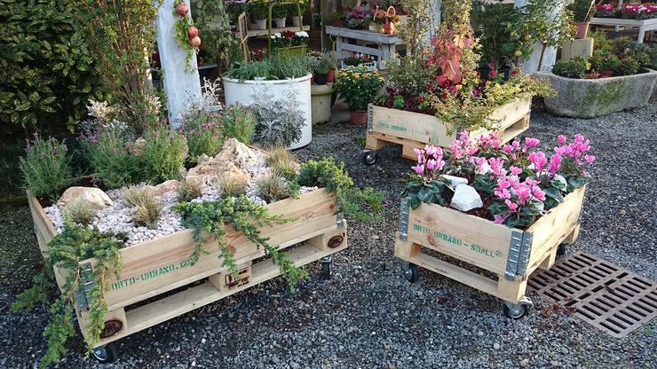Berilla srl 花園植物盆栽與花瓶
