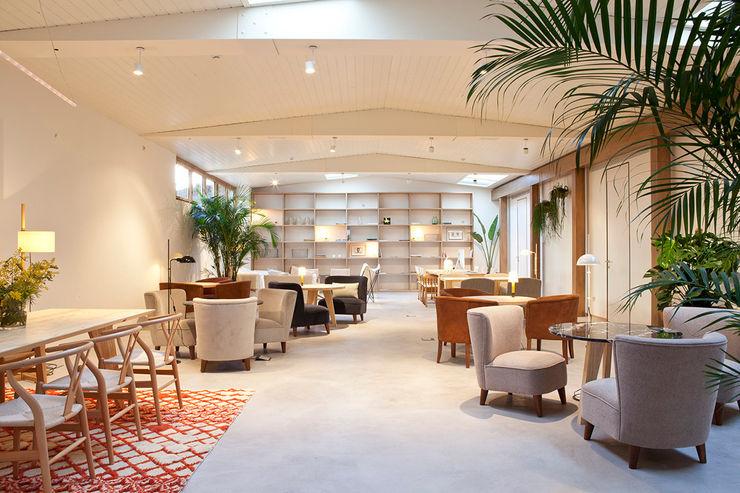 interiores con plantas en el Hotel Margot, Barcelona Asilvestrada Salones tropicales