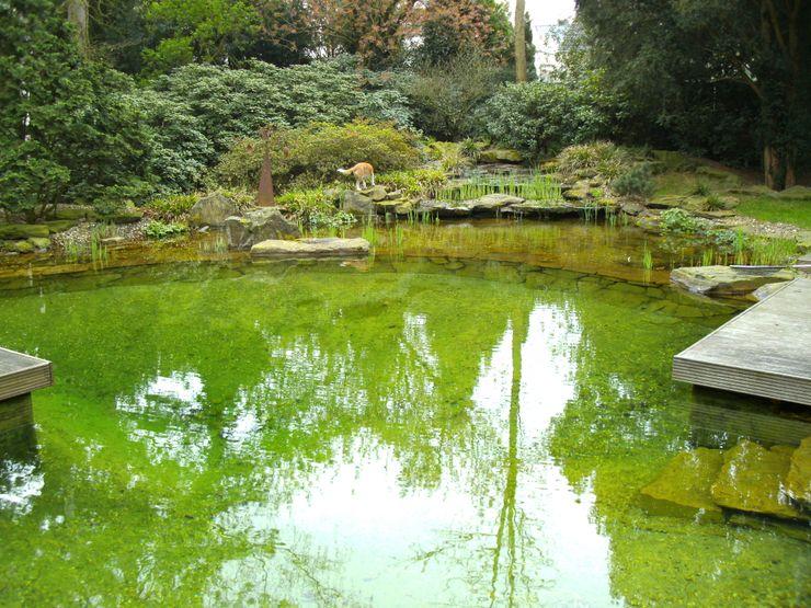 Ogród Architektura krajobrazu- naturalne systemy uzdatniania wod Azjatycki ogród