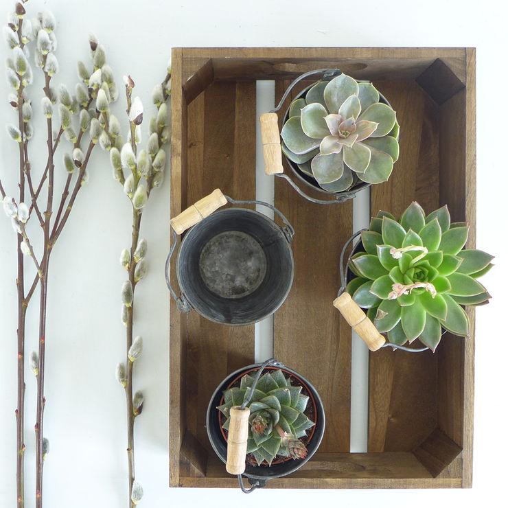 Traditional Wooden Seed Tray Lilac Coast JardínJarrones y macetas