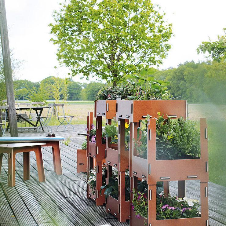 Werkhaus Design + Produktion GmbH Balcon, Veranda & TerrassePlantes et fleurs