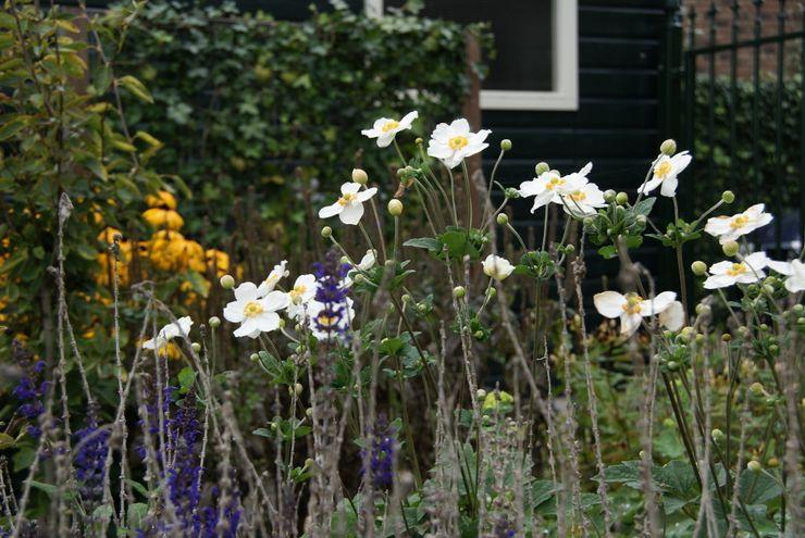 Up close... Ontwerpstudio Angela's Tuinen Landelijke tuinen