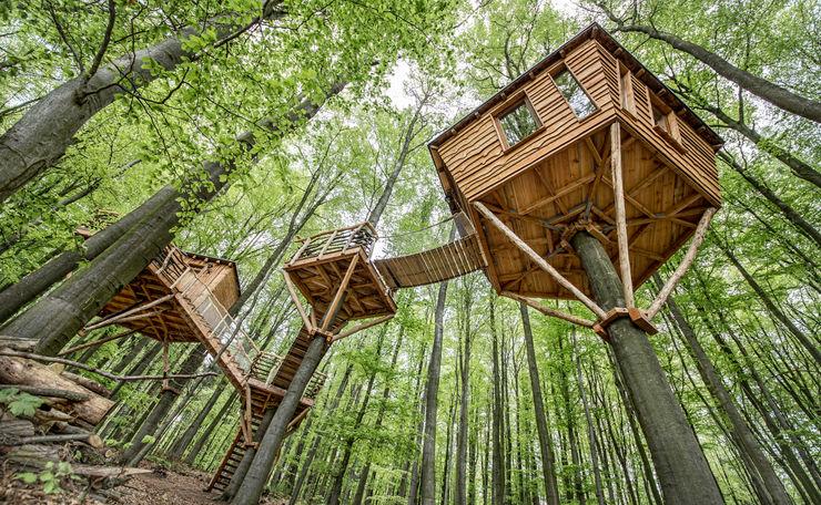 Luftschlösser Baumhausprojekte _ Baumhausherberge Robins Nest Luftschlösser Ausgefallene Hotels