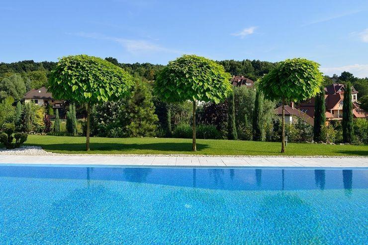 ARCHITEKT.LEMANSKI Modern pool