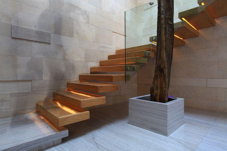 Código Z Arquitectos モダンスタイルの 玄関&廊下&階段