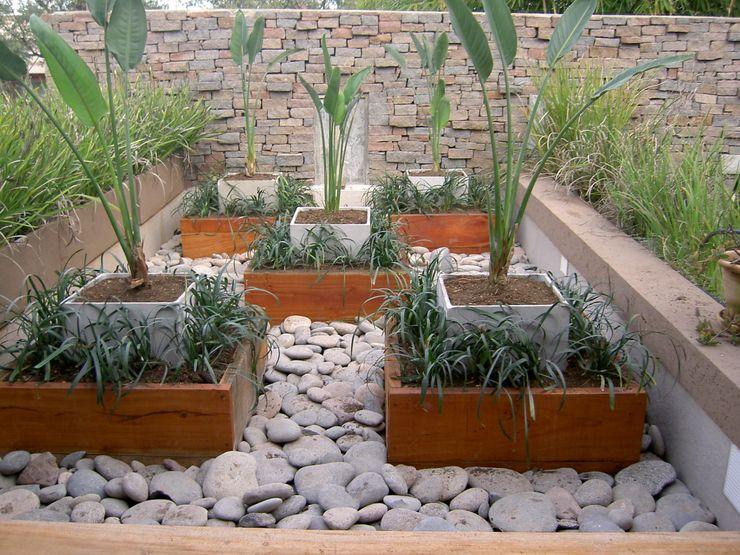 BAIRES GREEN MUEBLES Giardino in stile asiatico
