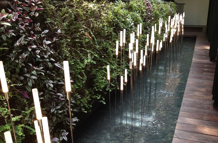 Tinderbox Landscape Studio Jardines de estilo tropical