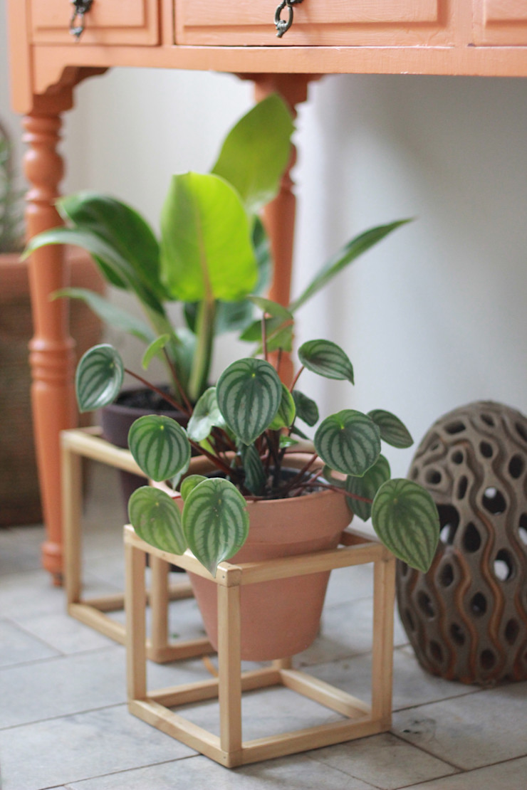 Pomelo Garden Accessories & decoration