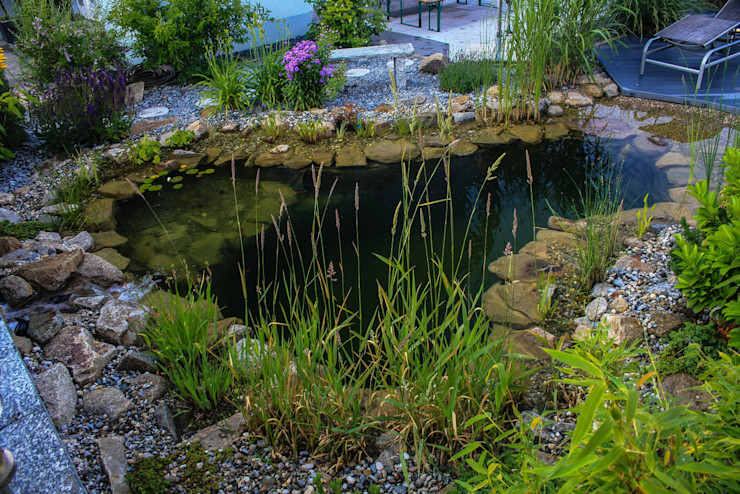 Jacuzzi mit Gartenteich für ungetrübten Badespaß -GardScape- private gardens by Christoph Harreiß Moderner Garten