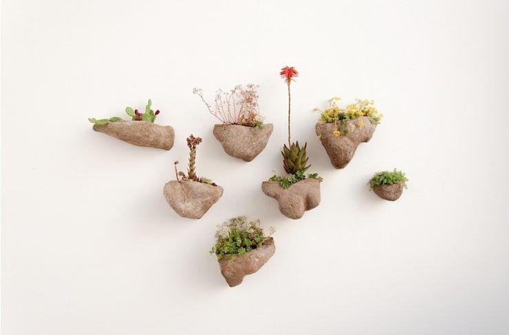 Wedding Plant - Mineral Julie Martin Paysagisme d'intérieur