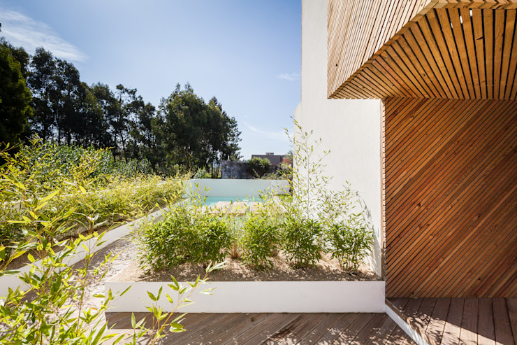 SilverWoodHouse Joao Morgado - Architectural Photography モダンな庭