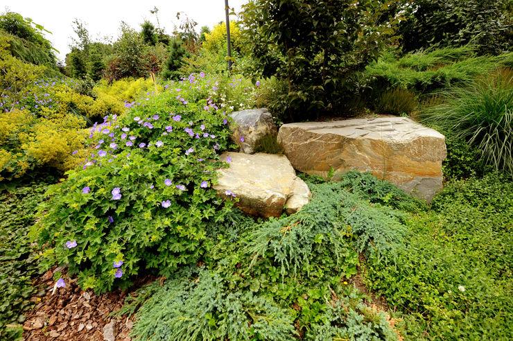 Tuindesign & Styling Ves Reynders Modern Garden