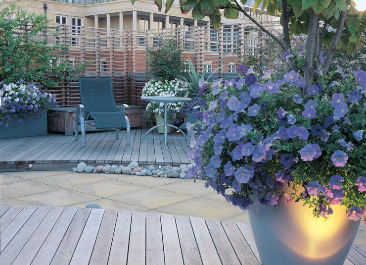 A Roof Garden, Chelsea Bowles & Wyer Modern balcony, veranda & terrace