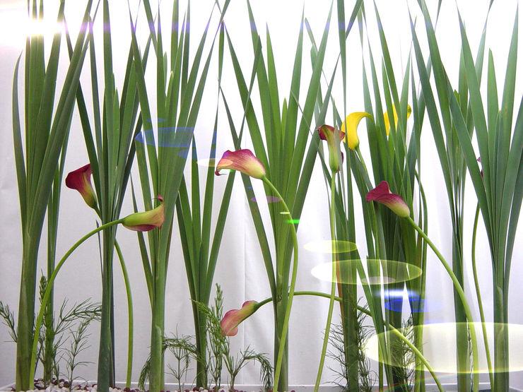 Haedi-Flor Meisterbetrieb Tiendas y espacios comerciales Multicolor