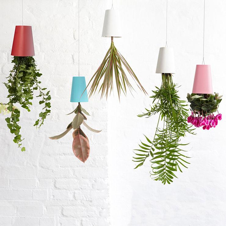 Jardinière sky- pots de fleurs retournés IdéeCadeau.fr Paysagisme d'intérieur
