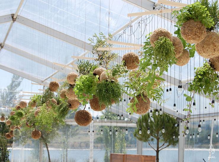 Instalação de plantas fiu suspensas na decoração de um evento fiu jardins, lda. Jardins modernos