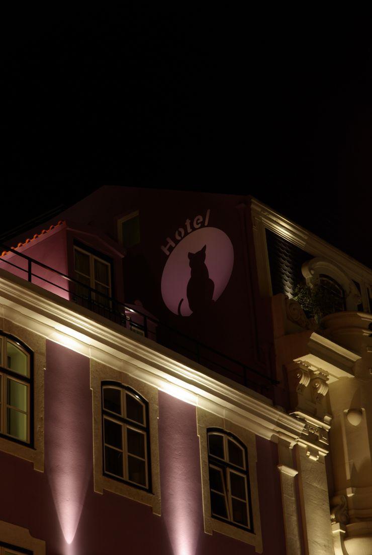 Visual Stimuli Hotels