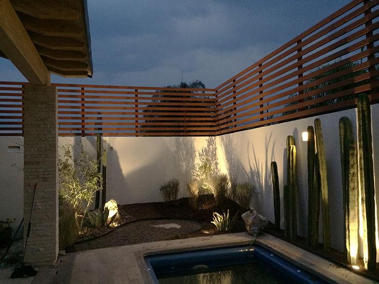 Nocturna del jardín recién plantado. Hábitas Jardines de piedra