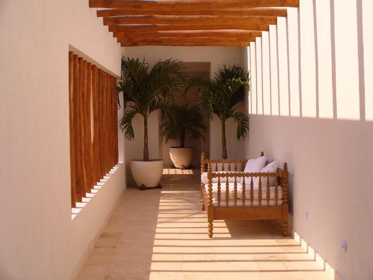 Tropico Jardineria Vườn phong cách nhiệt đới