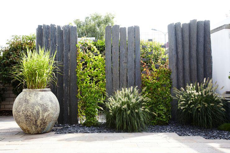 MM NATURSTEIN GMBH Jardines de estilo moderno