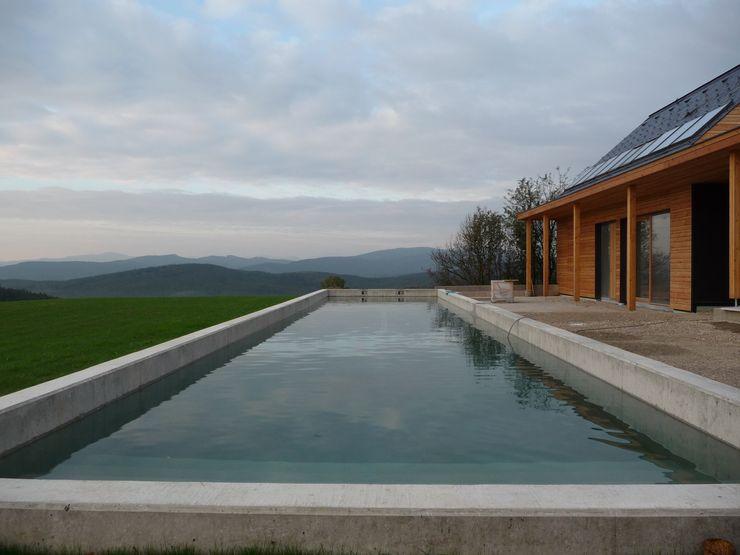 Newpool im Wienerwald BEGRÜNDER Minimalistische Pools