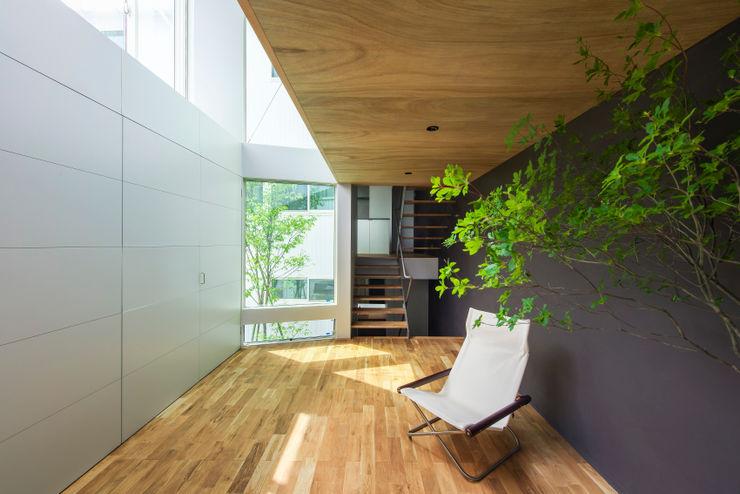 Nobuyoshi Hayashi Jardines de invierno modernos