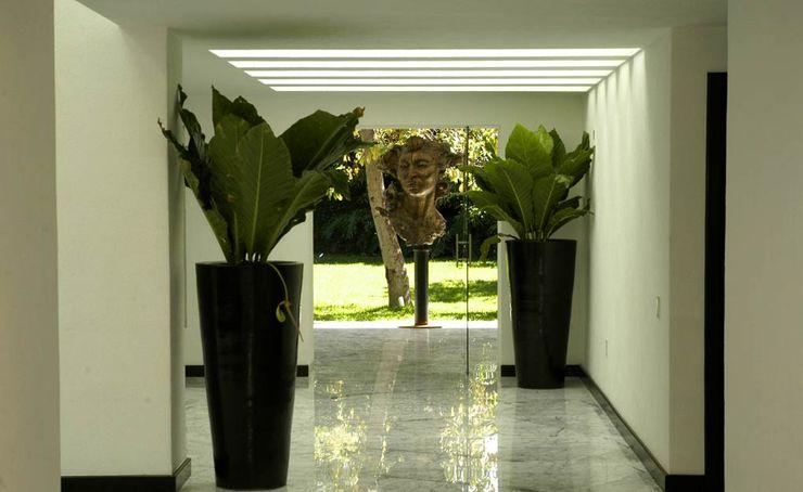 Olivia Aldrete Haas Modern Corridor, Hallway and Staircase
