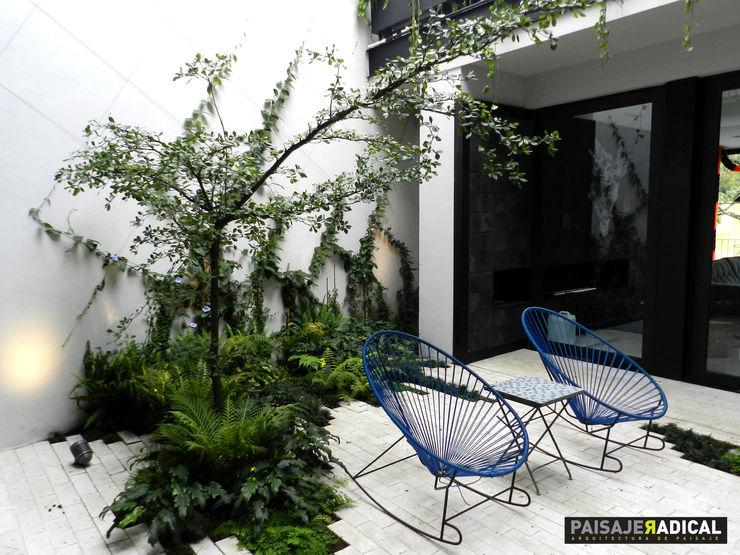 Paisaje Radical Modern Garden