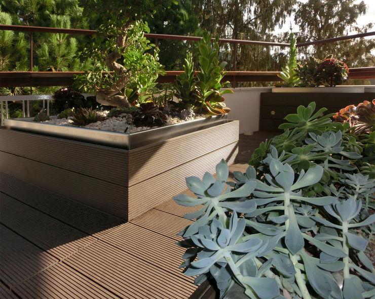 Terraza reformada con tarima y macetas de lamas sintéticas; detalle. Daifuku Designs Balcones y terrazas asiáticos