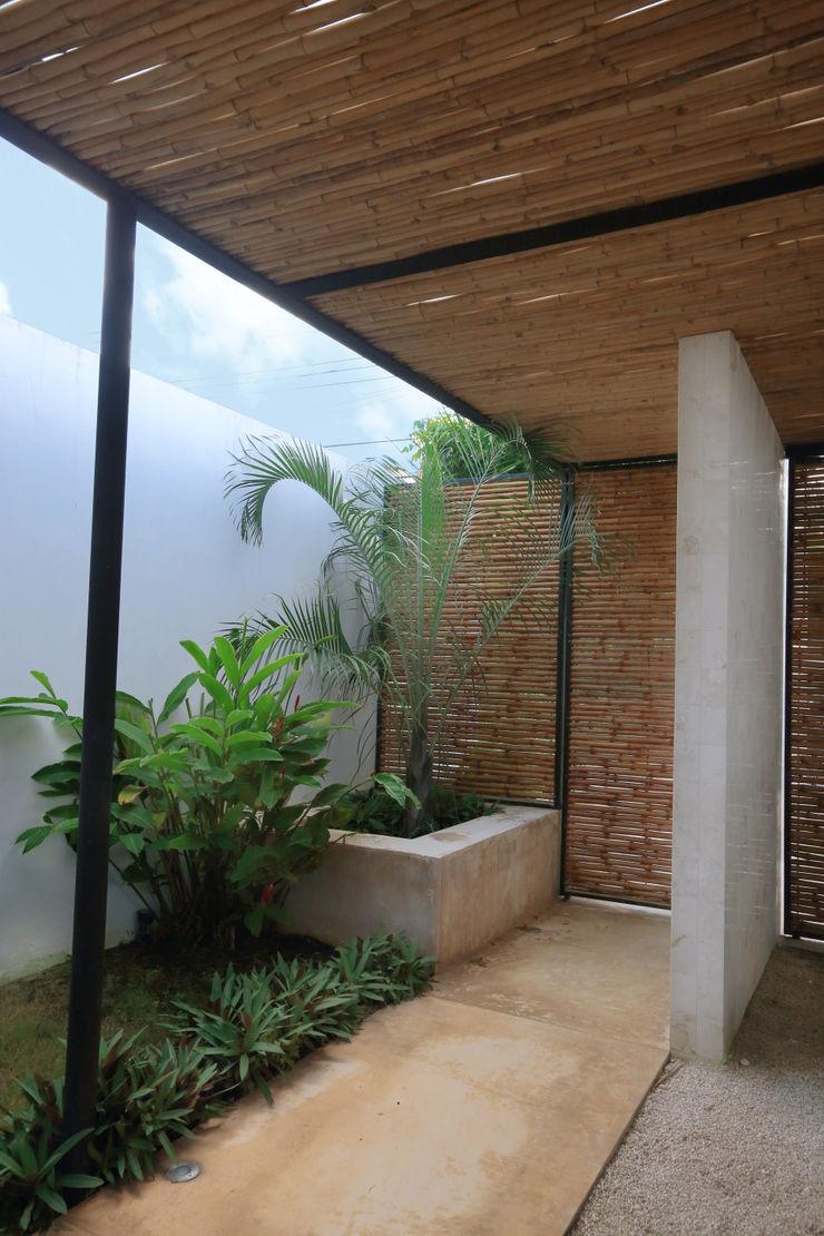 FGO Arquitectura Tropical style garden Bamboo Yellow