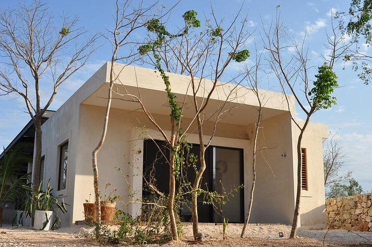 Degetau Arquitectura y Diseño Nhà phong cách nhiệt đới Chất xơ tự nhiên Beige
