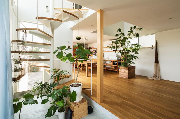 藤森大作建築設計事務所 Коридор, прихожая и лестница в модерн стиле