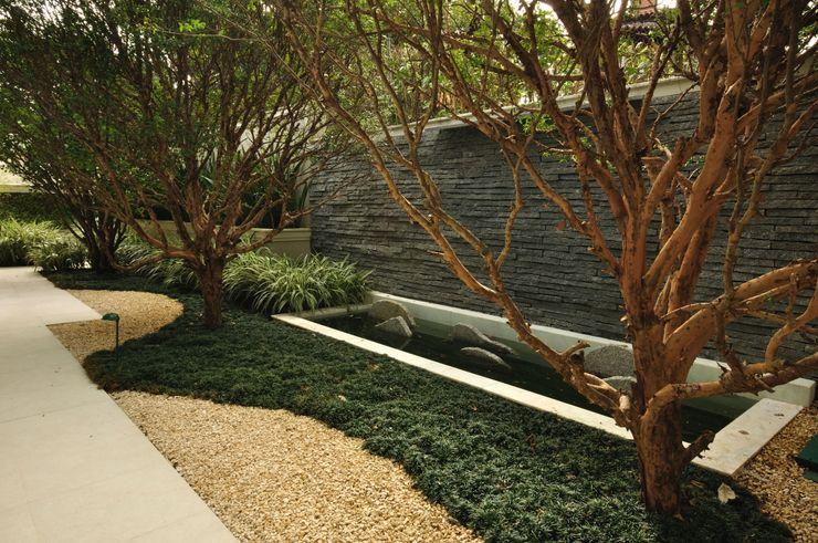 alexandre galhego paisagismo Tropischer Garten