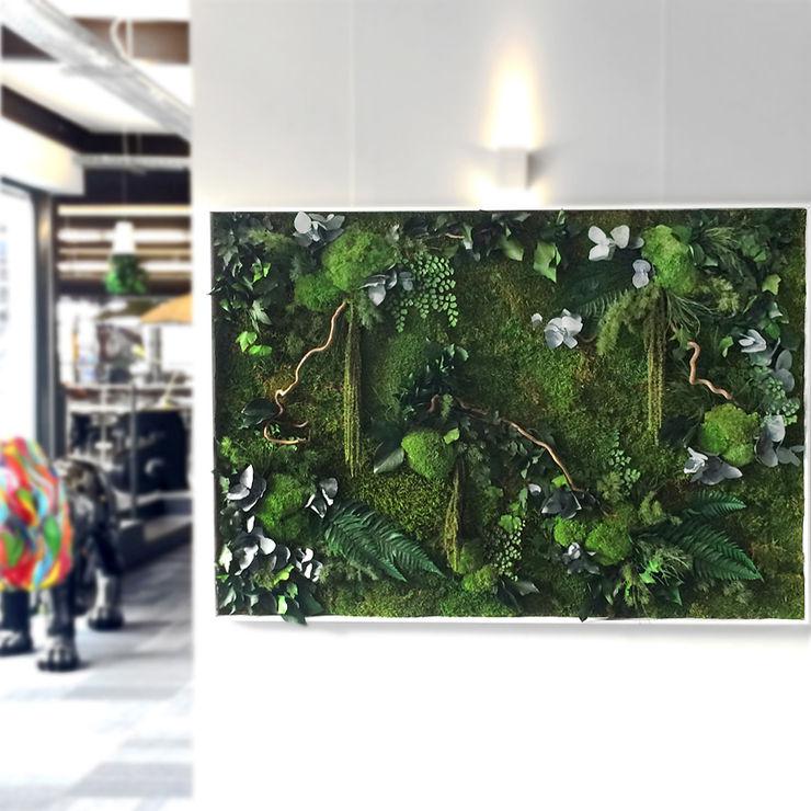Mur végétal / Green wall Adventive Locaux commerciaux & Magasins Vert