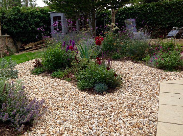 See through planting Cornus Garden Design Moderner Garten