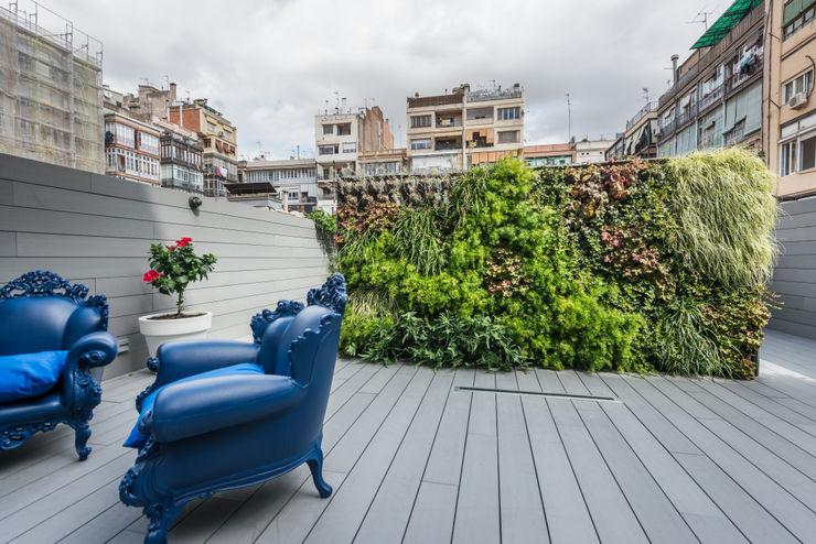 Jardín vertical   Reforma Bruc   Standal homify Jardines modernos: Ideas, imágenes y decoración