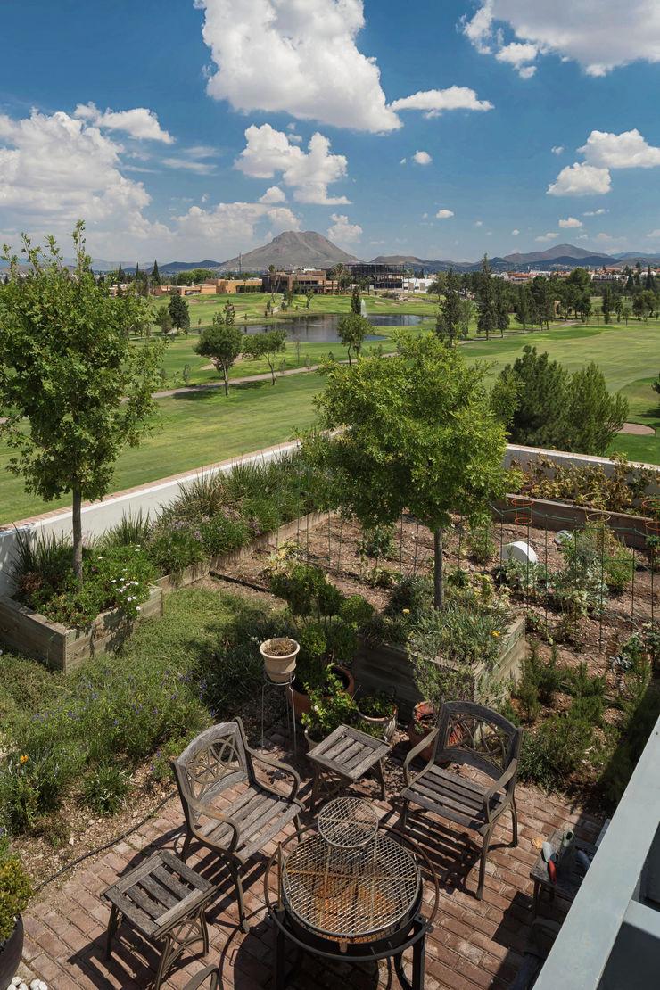 ARQUITECTURA EN PROCESO Modern Garden